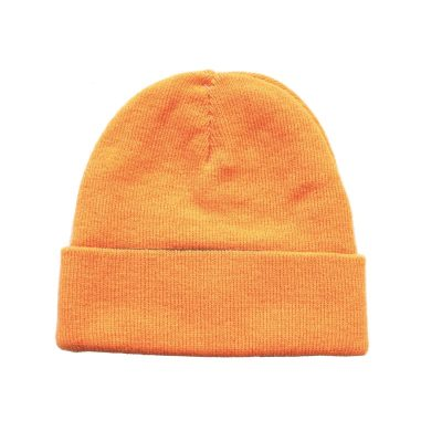 Reversible Knitted Beanie